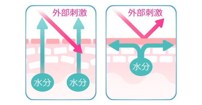 バリア機能の低い肌とバリア機能の高い肌