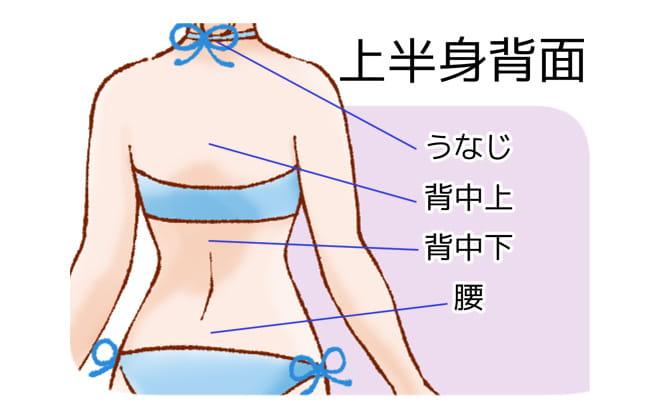 恋肌で施術可能な肩・腕・手の裏部位